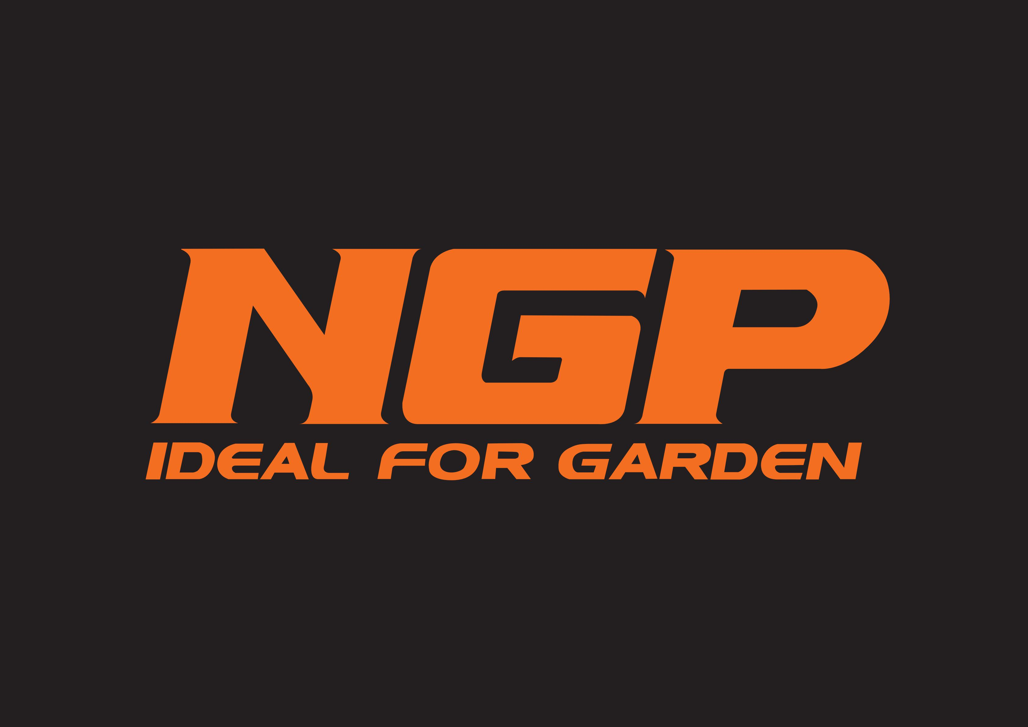 NINGBO NGP INDUSTRY CO.,LTD.