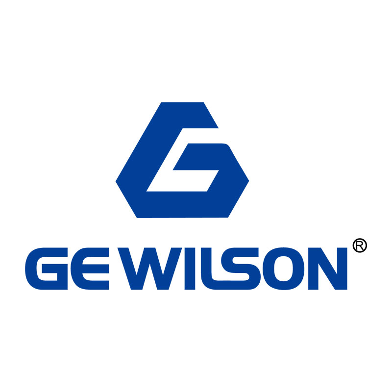 GEWILSON HOLDING CO.,LTD.
