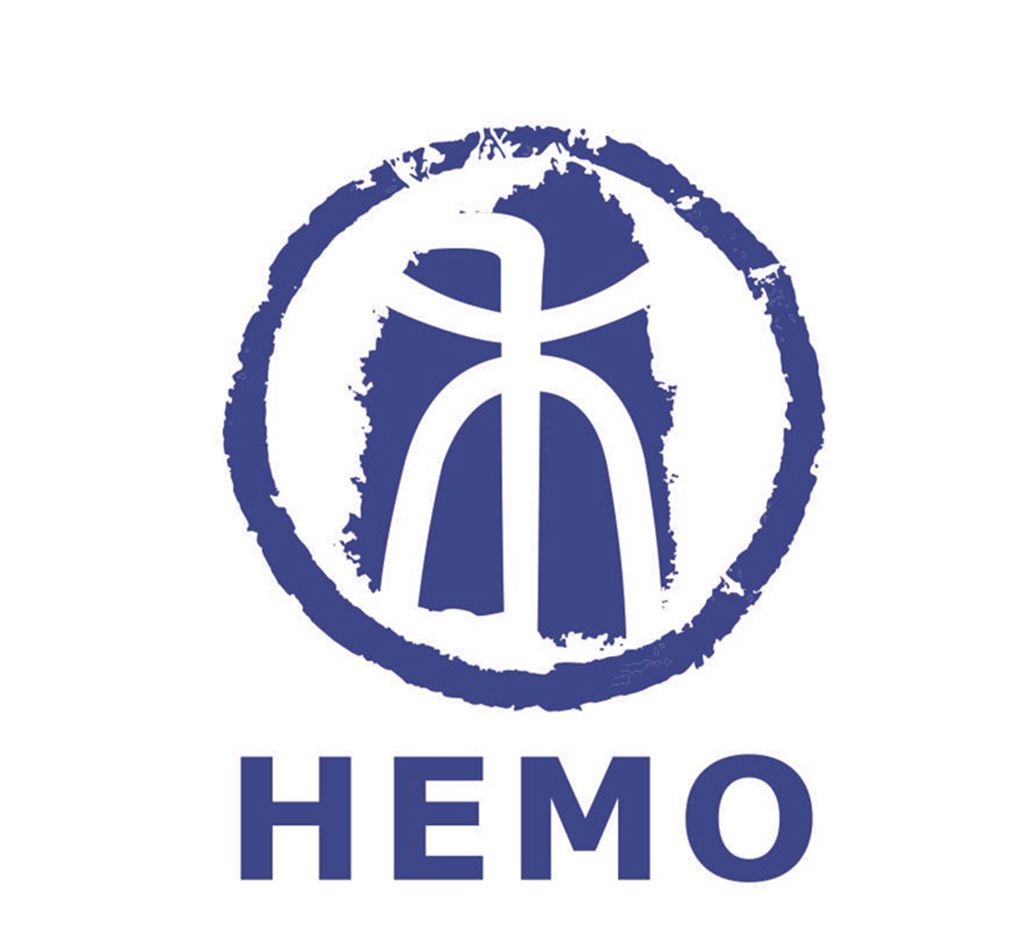 HEFEI HEMO IMPOET AND EXPORT COMPANY LIMITED
