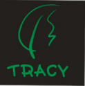 SHENZHEN TRACY ARTS AND CRAFTS CO.,LTD