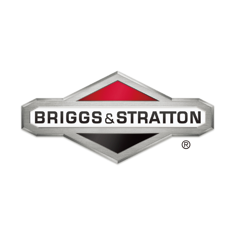 Briggs& Stratton (Chongqing) Engine Co. Ltd.