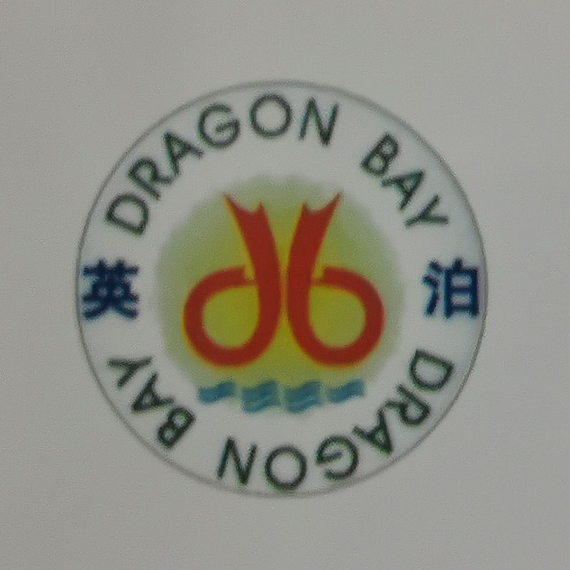 Liuzhou Dragon Bay Industrial And Trading Co., Ltd.