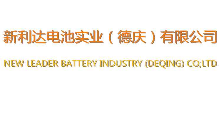 NEW LEADER BATTERY INDUSTRY (DEQING) CO;LTD