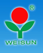 WEIHAI NEW WORLD INT'L COMPANY