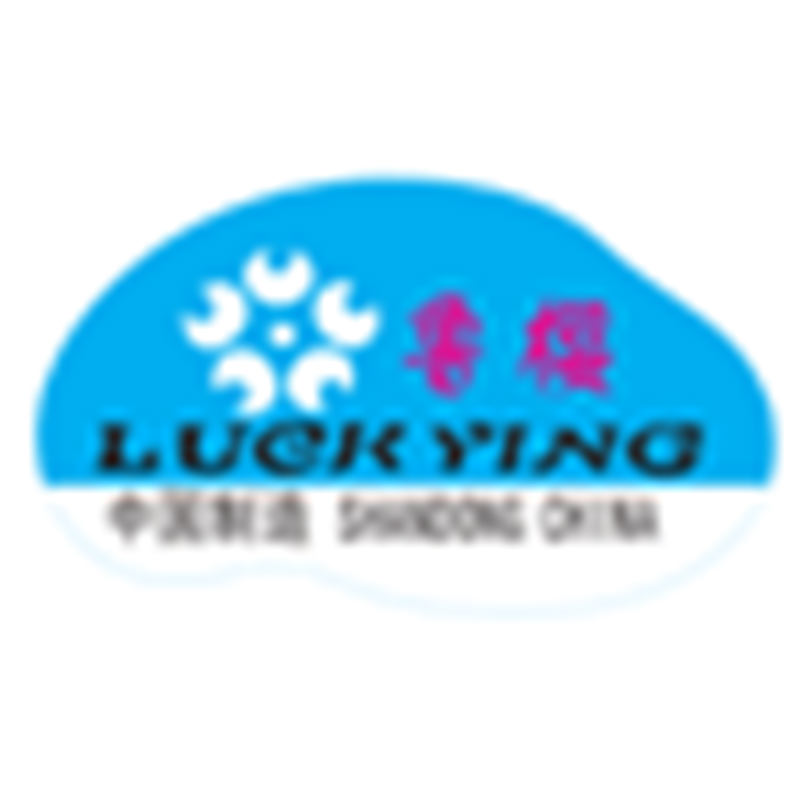 SHANDONG LUCKYING INDUSTRY AND TRADE CO., LTD.