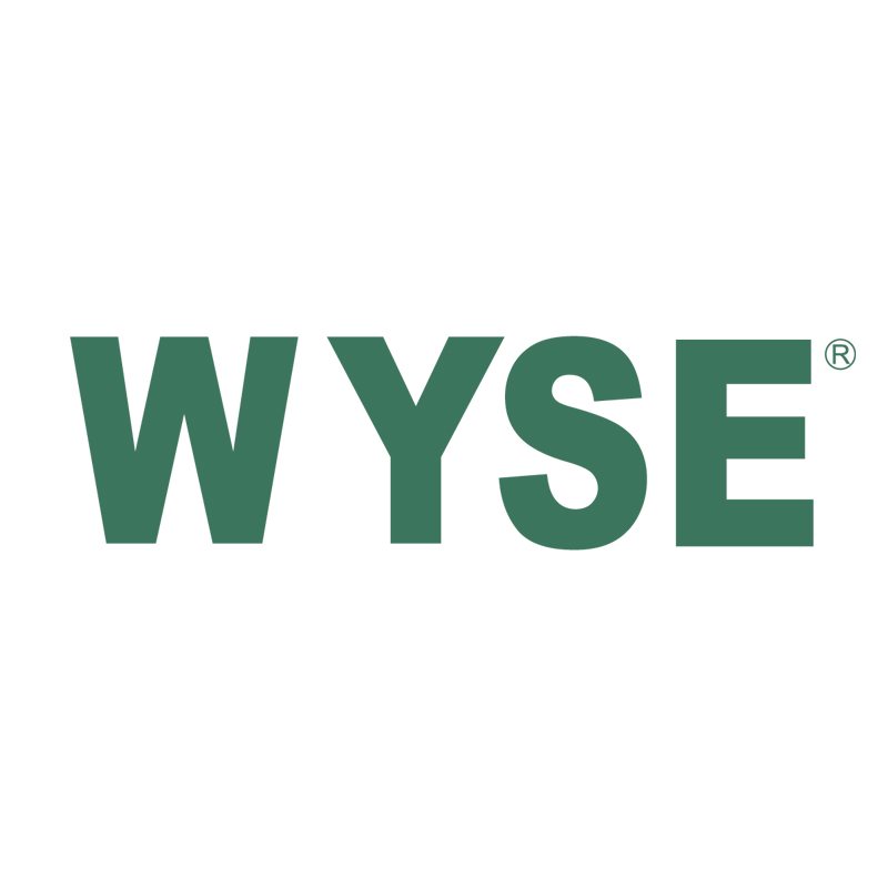 WYSE INDUSTRIAL(SHENZHEN)CO.,LTD