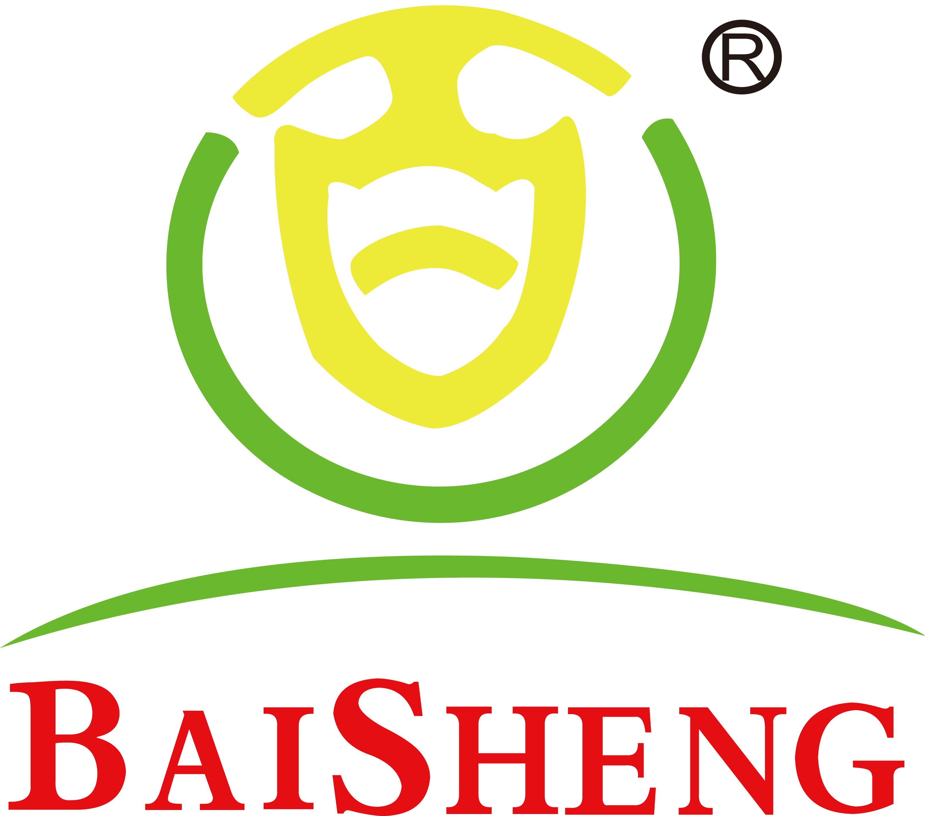 Yantai Baisheng Construction Material Technology Co.,Ltd