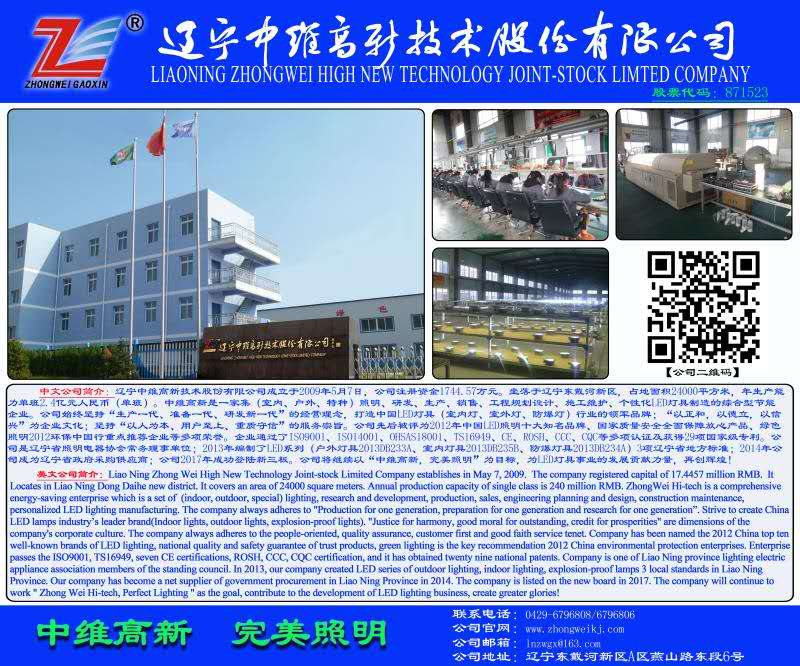 LIAONING ZHONGWEI HIGH NEW  TECHNOLOGY JOINT-STOCK LIMITED COMPANY