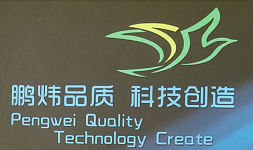 HE BEI PENG WEI ELECTRICAL APPLIANCES CO.,LTD