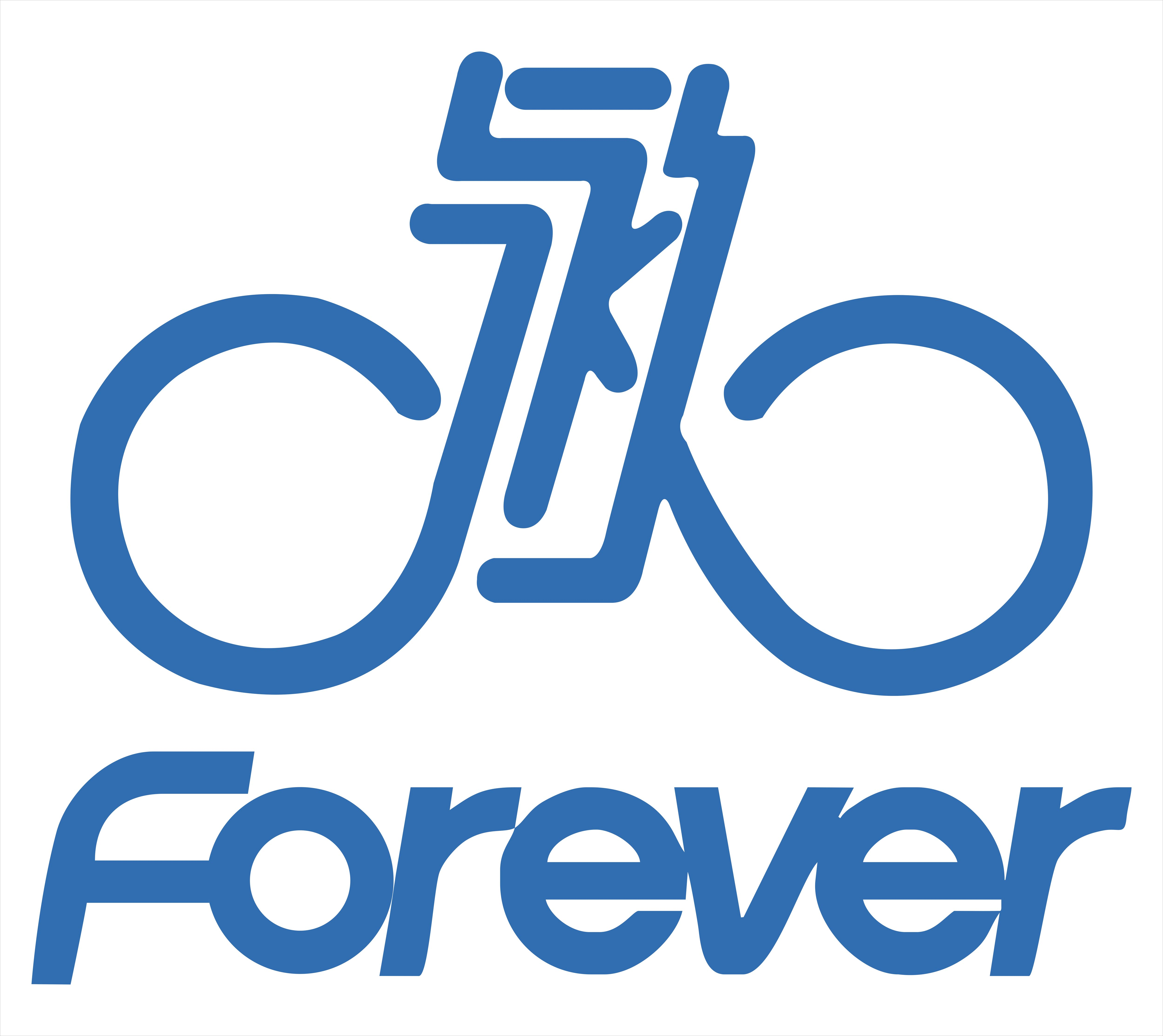 SHANGHAI FOREVER IMPORT & EXPORT CO., LTD.