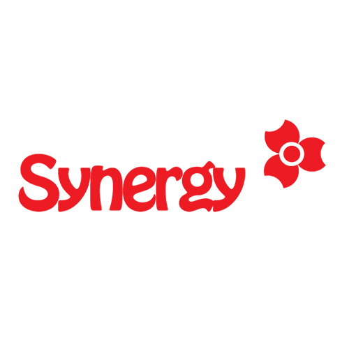 SYNERGY TRADING COMPANY LIMITED