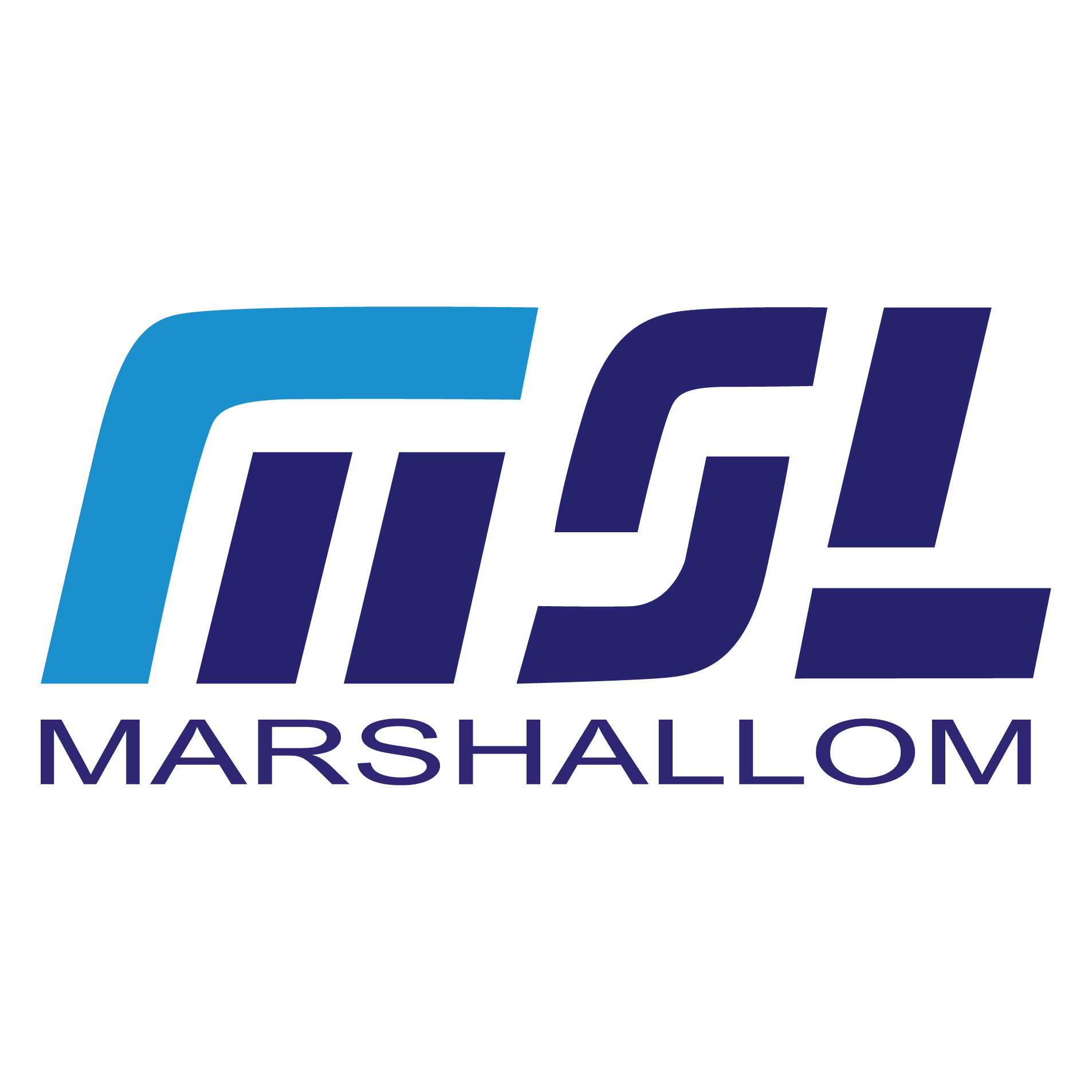 Marshallom  Metal  Manufacture  (Huizhou) CO., LTD
