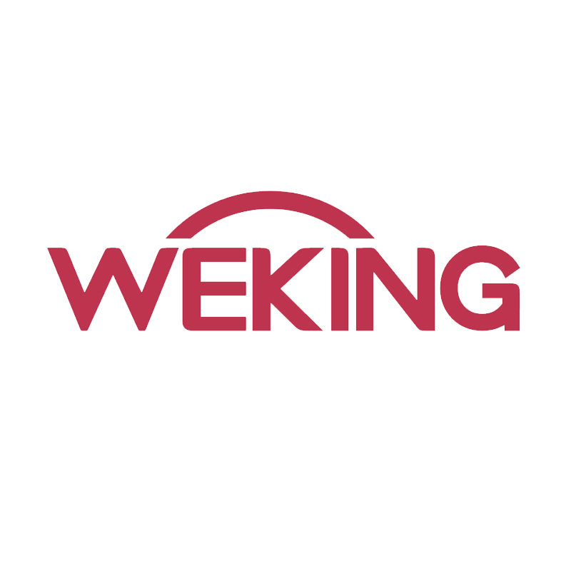 GUANGDONG WEKING GROUP CO.,LTD